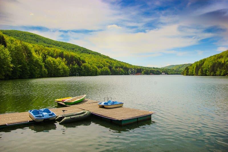 Berglandschap met dokken en de boten van de pedaalcyclus op meer Gozna door bos in Valiug wordt omringd die stock afbeeldingen