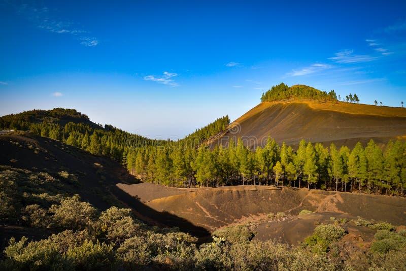 Berglandschap met rotsen en pijnboombomen in het eiland van Gran Canaria, Spanje royalty-vrije stock foto