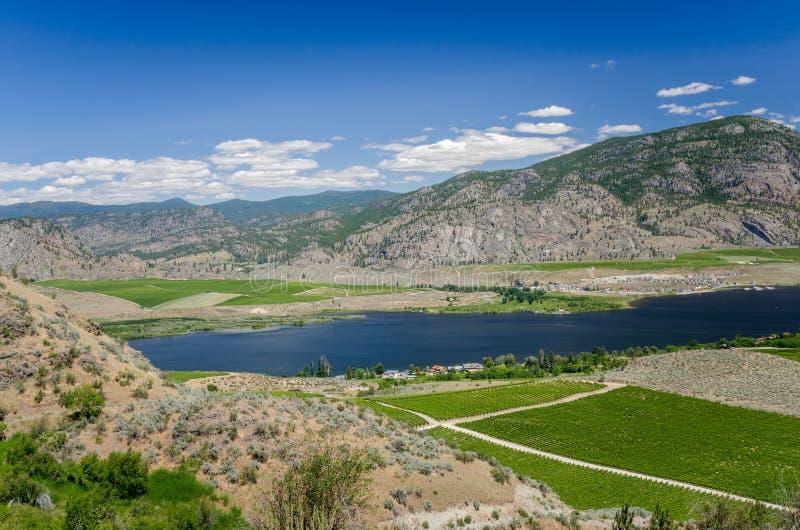 Berglandschap onder Blauwe Hemel in de Okanagan-Vallei stock afbeeldingen