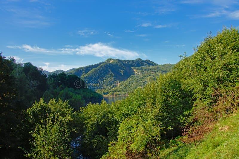 Berglandschap op een zonnige ochtend in het Roemeense platteland stock afbeelding