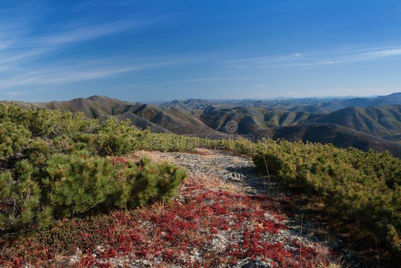 Berglandschap op Magadan-gebied stock foto