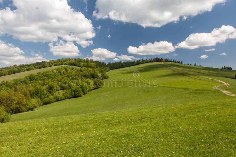 Berglandschap, schoonheid van aard stock foto's