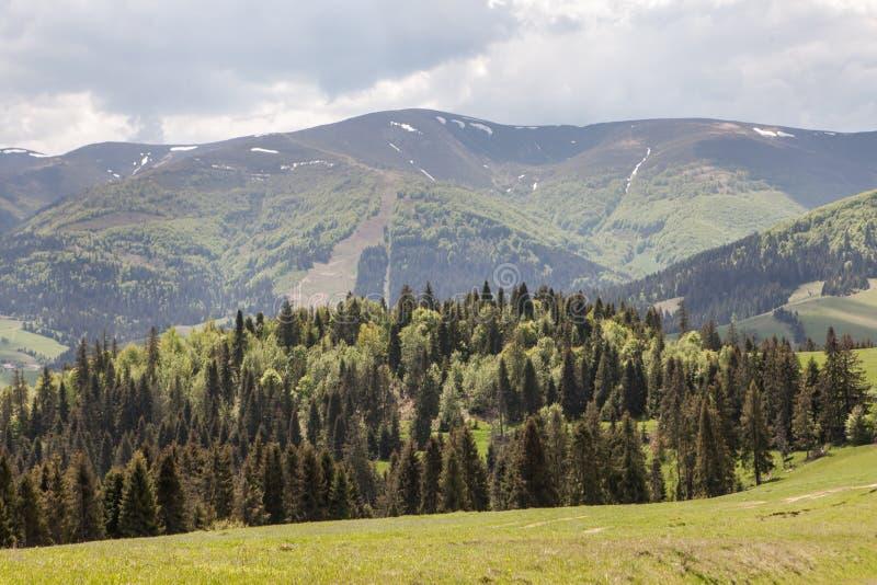 Berglandschap, schoonheid van aard stock foto