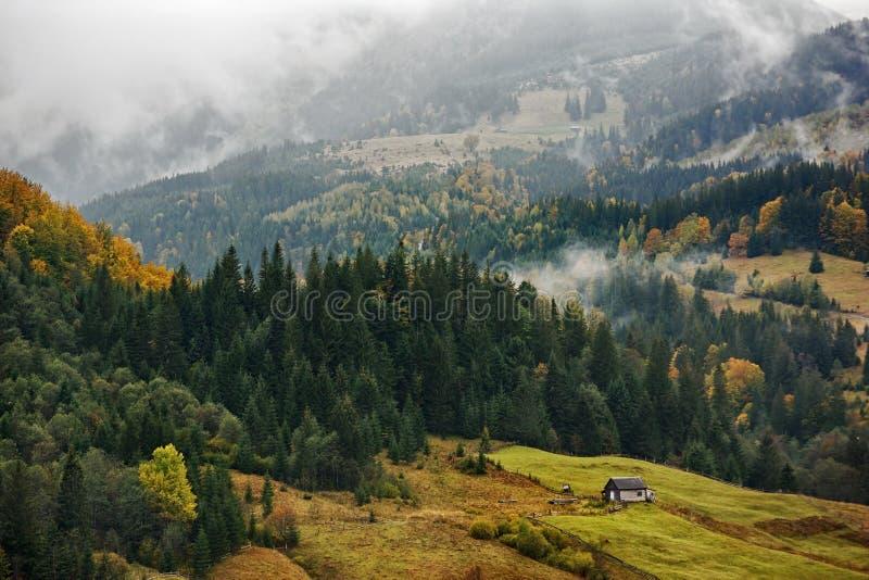 Berglandschap van mooie mistige ochtend in de Oekraïense Karpaten stock afbeelding