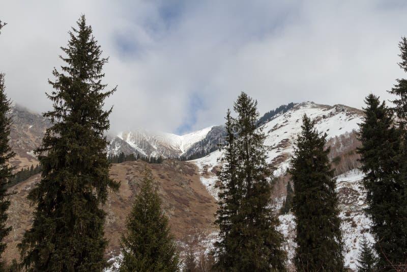 Berglandskap av Tian Shan i b?rjan av en varm vinter royaltyfria bilder