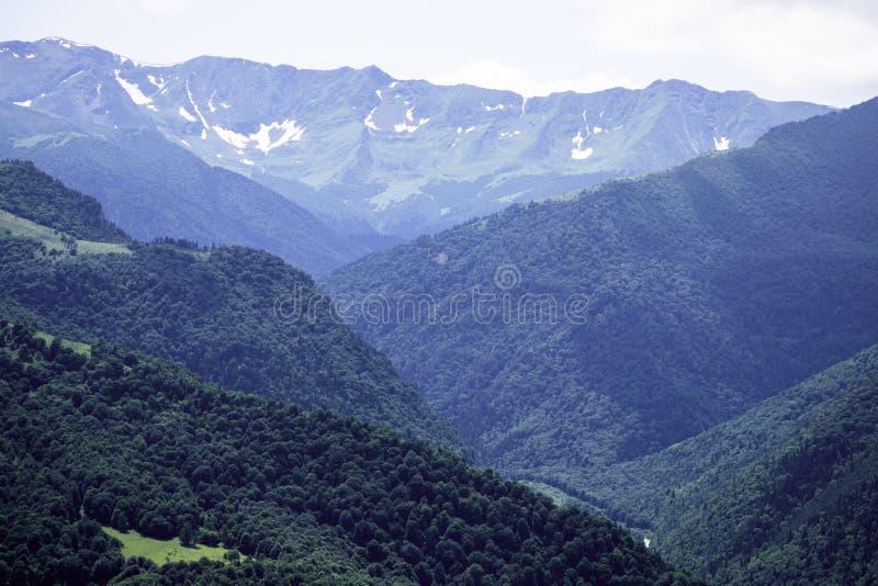 Berglandskap, berg, gröna träd, dal, glaciärer Arkhyz Karachay-Cherkessia, Ryssland arkivbilder