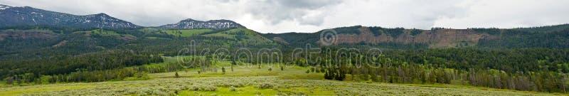 Berglandskap från Wyoming royaltyfri bild