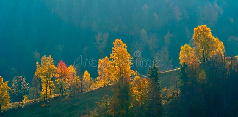 Berglandskap i nedgång fotografering för bildbyråer
