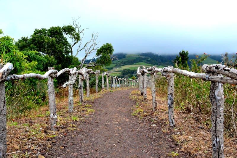 Berglandskap med byn för fotvandra slinga av aguaen, Sao Miguel Island, Azores arkivbilder