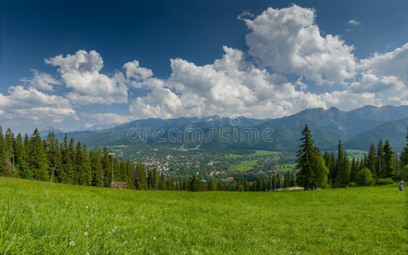 Berglandskap med den gröna ängen och staden i dalen arkivfoto