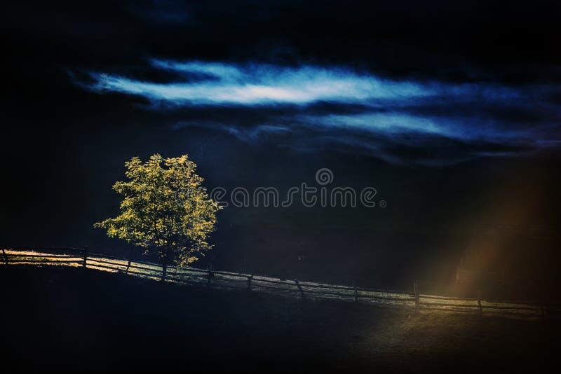 Berglandskap med höstmorgondimma på soluppgång royaltyfri bild