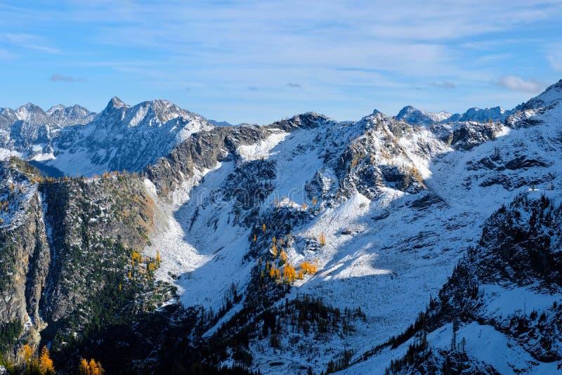Berglandskap med snö- och gulingträd royaltyfri fotografi