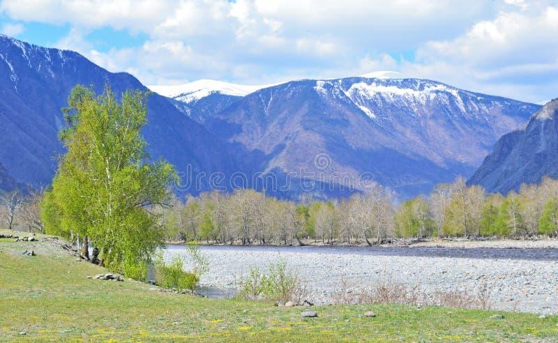 Berglandskapet med som torkas upp floodplainen av ett berg, rive arkivfoto