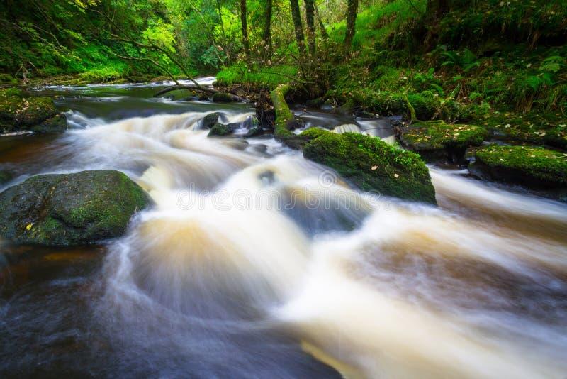 Bergliten vik i Irland royaltyfri bild