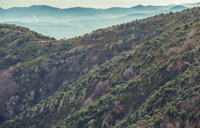 Berglutningar och faraway blåa berg royaltyfri fotografi