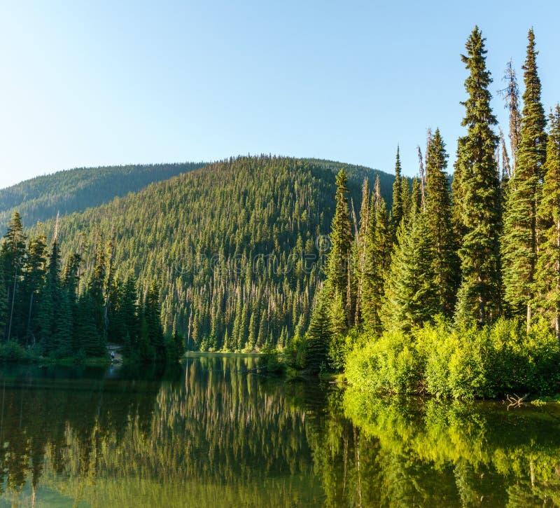 Bergmeer in bergen bij zonnige dag Brits Colombia Canada stock afbeeldingen