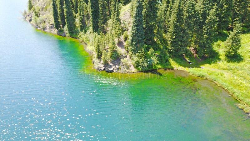 Bergmeer Kolsai Mooie mening van het meer in de kloof royalty-vrije stock fotografie
