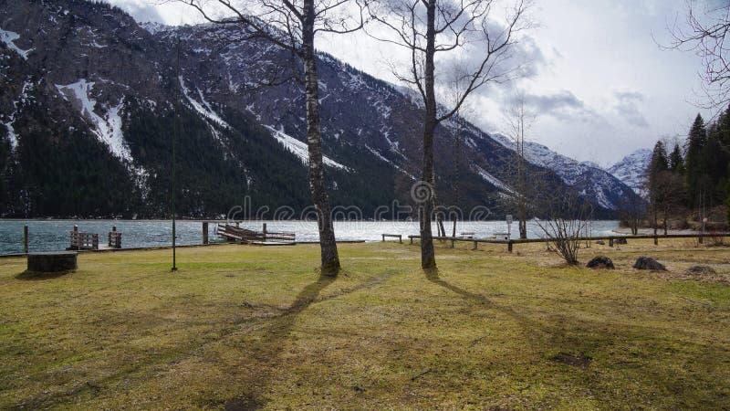 Bergmeer in Oostenrijk met boom en sneeuw behandelde berg royalty-vrije stock afbeelding