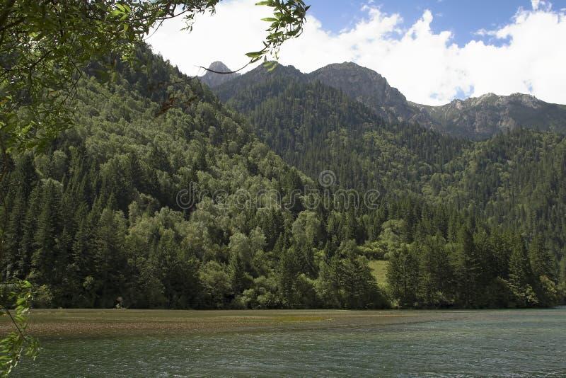 Bergmening met meer en bos stock foto's