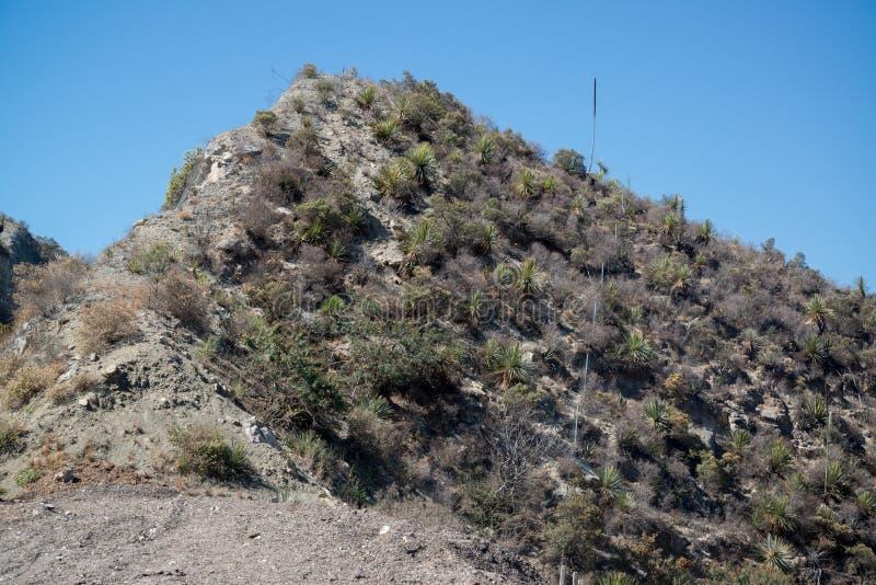 Bergmening, Oaxaca royalty-vrije stock afbeeldingen