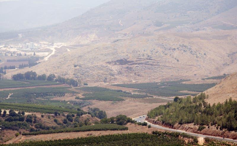 Bergmeningen en druivenboomgaarden in noordelijk Israël royalty-vrije stock afbeelding