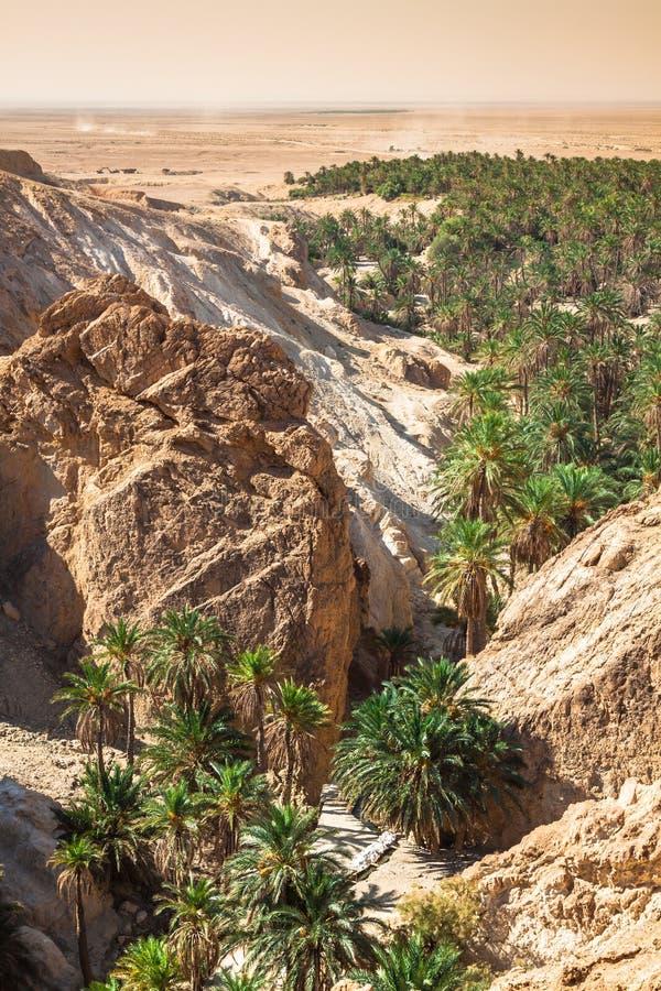 Bergoase Chebika bij grens van de Sahara, Tunesië, Afrika stock fotografie