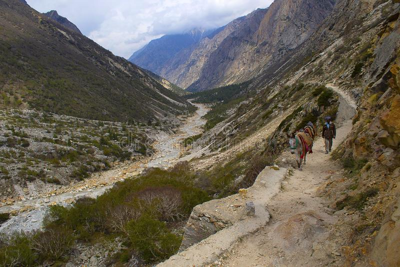 Bergpas dichtbij Gangotri-gletsjer, Uttarakhand royalty-vrije stock foto's