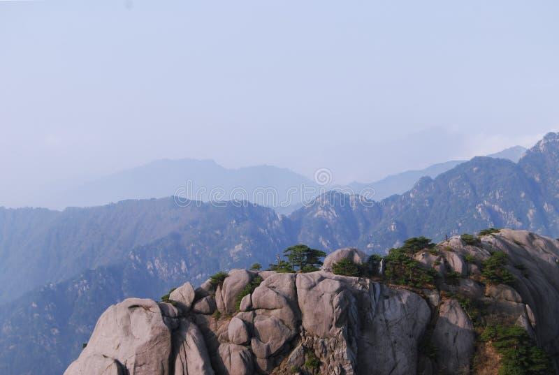 Bergpiek van Huangshan en Pinus in zonsopgang stock foto
