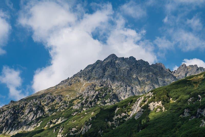 Bergpieken in de Poolse Tatra-bergen stock afbeelding