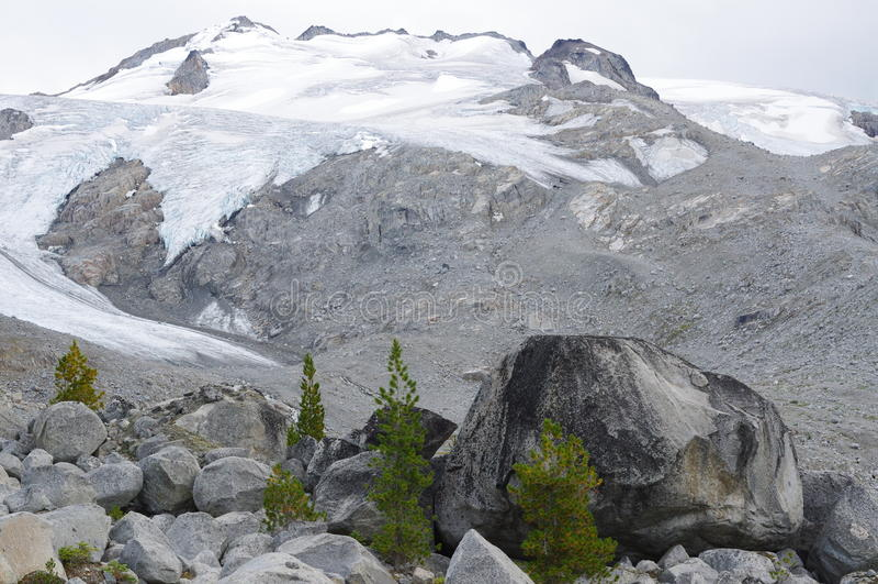 Bergpieken in Pemberton Icefield royalty-vrije stock foto's