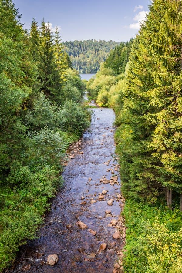 Bergrivier die in het meer stromen stock foto's