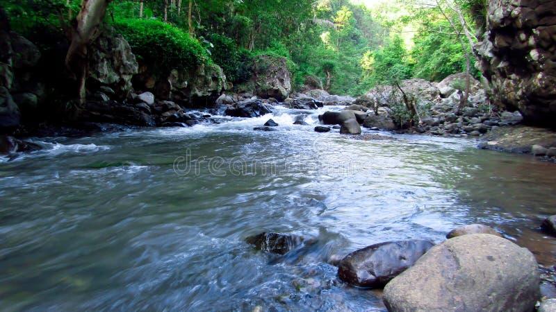 Bergrivier in het midden van bos, in Tasikmalaya, West-Java, Indonesië stock afbeelding