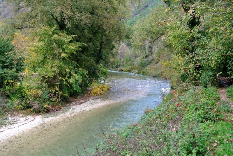 Bergrivier in het midden van groen bos in Italië stock foto