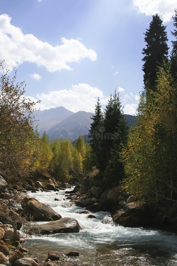 Bergrivier met duidelijk water in de herfst royalty-vrije stock fotografie