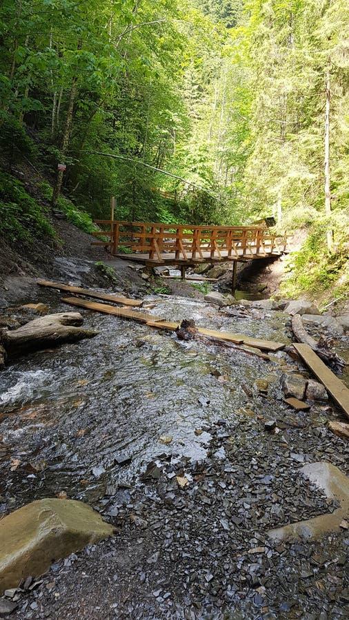 Bergrivier met een houten brug royalty-vrije stock foto