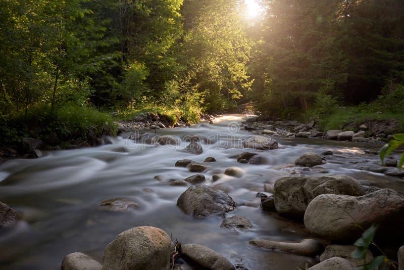 Bergrivier op een lange blootstelling in de zomer in de Karpatische bossen, een mooi landschap royalty-vrije stock afbeelding