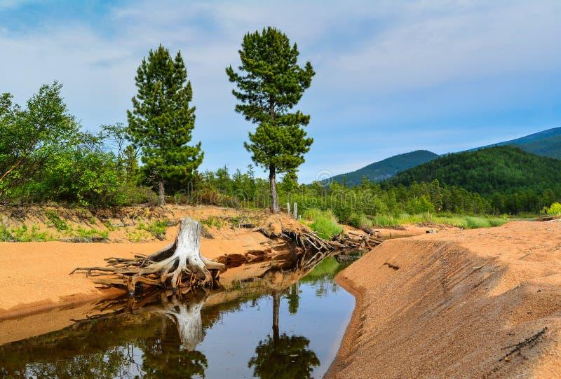 Bergrivier op Meer Baikal royalty-vrije stock foto