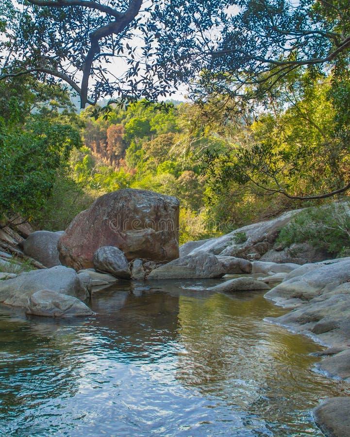 Bergrivier in wildernis royalty-vrije stock afbeeldingen