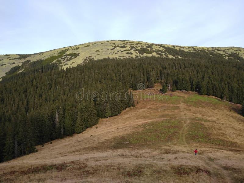 Bergrutt som monterar Sinyak från Bukovel Gorgany, ukrainska Carpathians royaltyfria foton