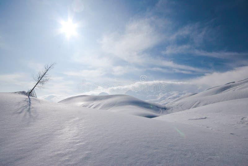 bergsikt fotografering för bildbyråer