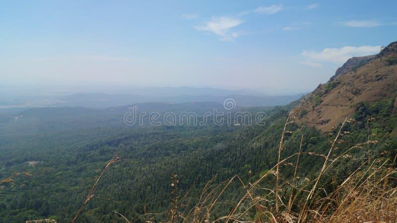 Bergsikt av den djupa skogen fotografering för bildbyråer
