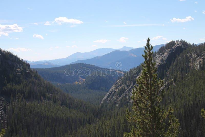 Bergsikt längs den Beartooth huvudvägen arkivfoton