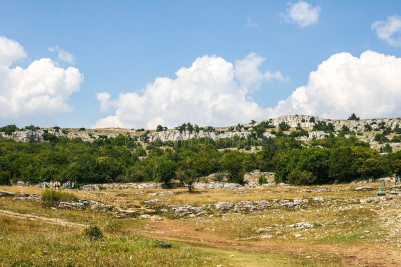 Bergskoglandskap i Krimet royaltyfri bild