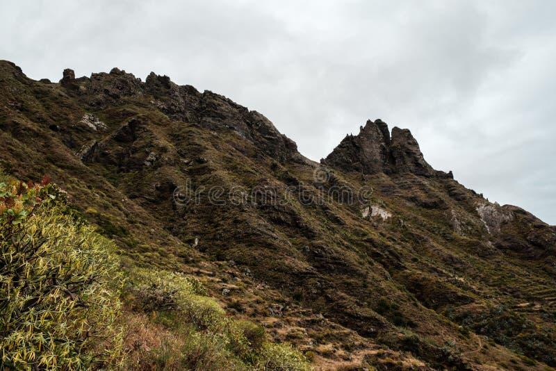 Bergsområden i nationalparken Anaga royaltyfri foto