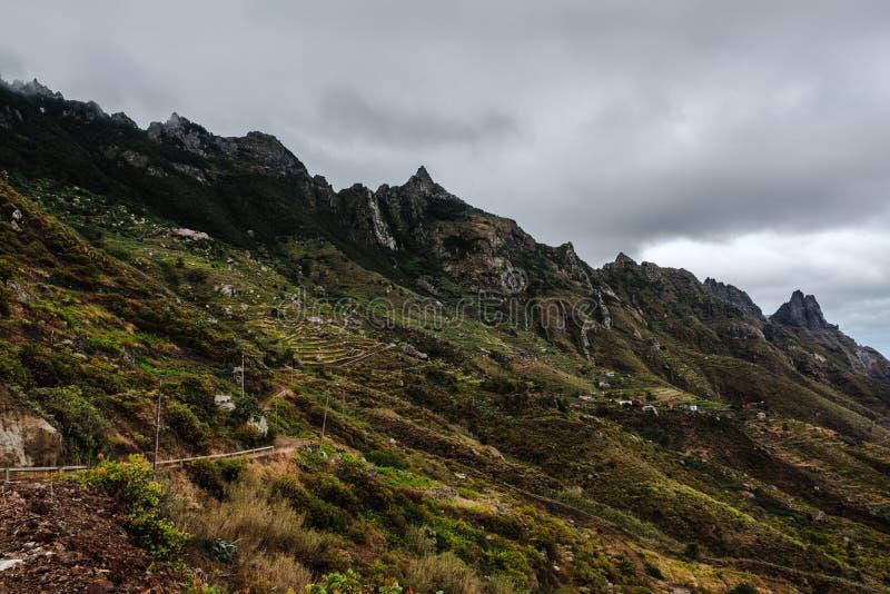 Bergsområden i nationalparken Anaga arkivfoto