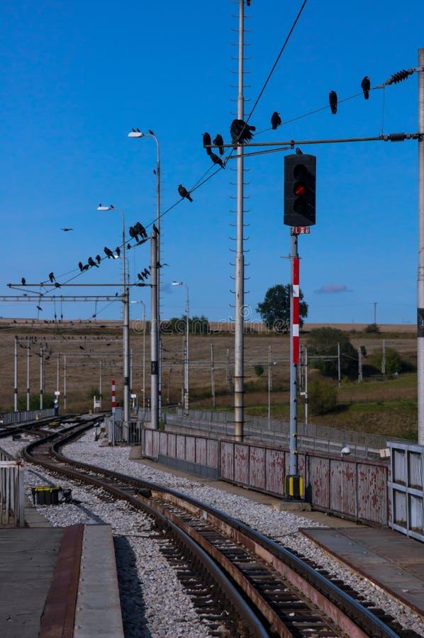 Bergspår som leder från den Poprad järnvägsstationen fotografering för bildbyråer