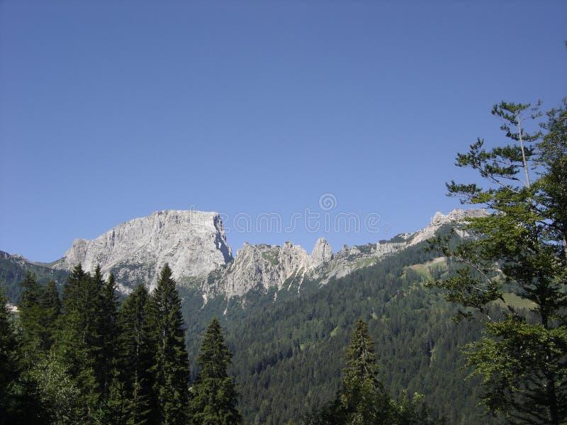 Bergspitze in Österreich lizenzfreies stockbild