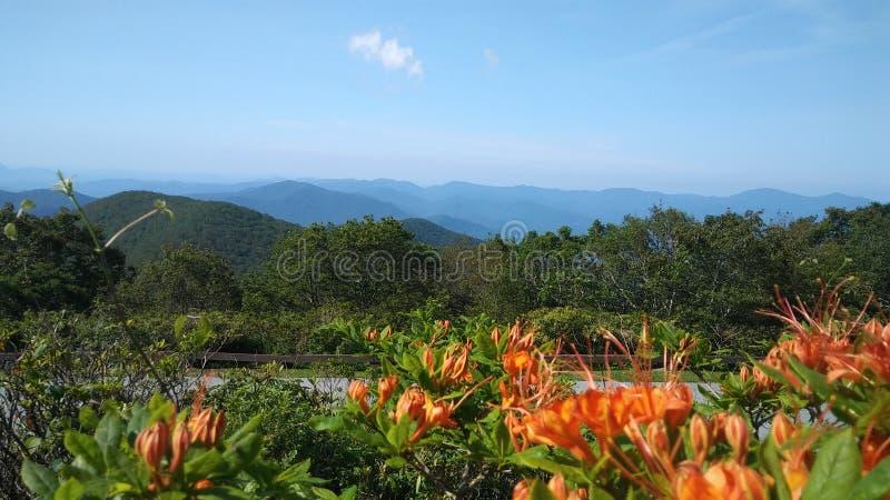Bergspitzen-Ansicht, Brasstown kahl, Georgia lizenzfreies stockbild