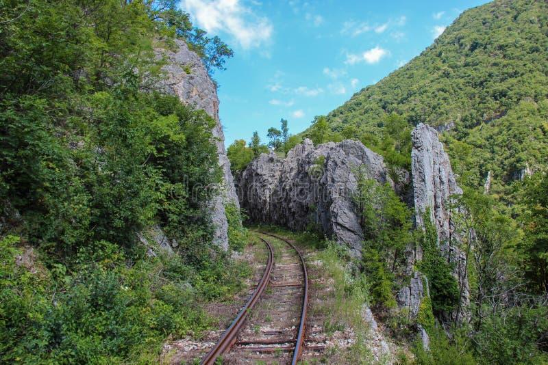 Bergspoorweg in Roemenië royalty-vrije stock foto
