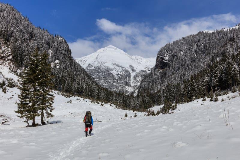 Bergsteiger auf dem Berg lizenzfreies stockbild